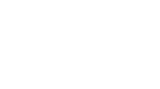 PT'S BREWING